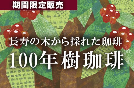 ブラジル・100年樹珈琲